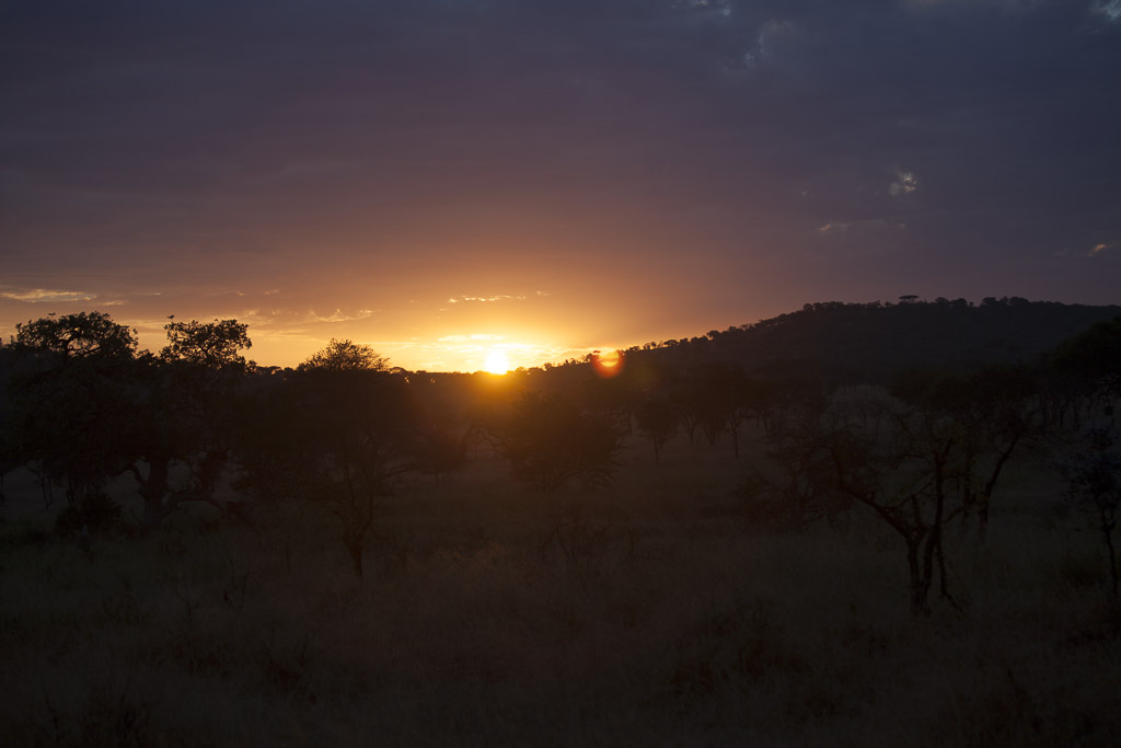 31072015 - Tanzania -  Serengeti - _MG_6350